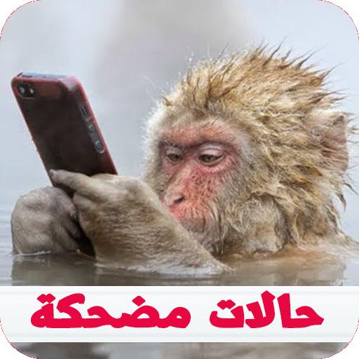 منشورات فيسبوك و حالات واتس اب مضحكة 2018 Apps On Google Play