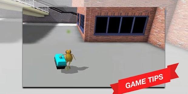 Advice for The Frog - Amazing Simulator - náhled