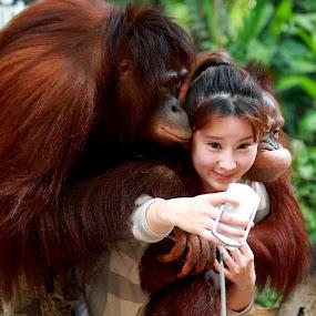 Child with orang - utang by Anup Kumar Adhikari - Babies & Children Children Candids (  )