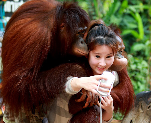 Child with orang - utang by Anup Kumar Adhikari - Babies & Children Children Candids (  )