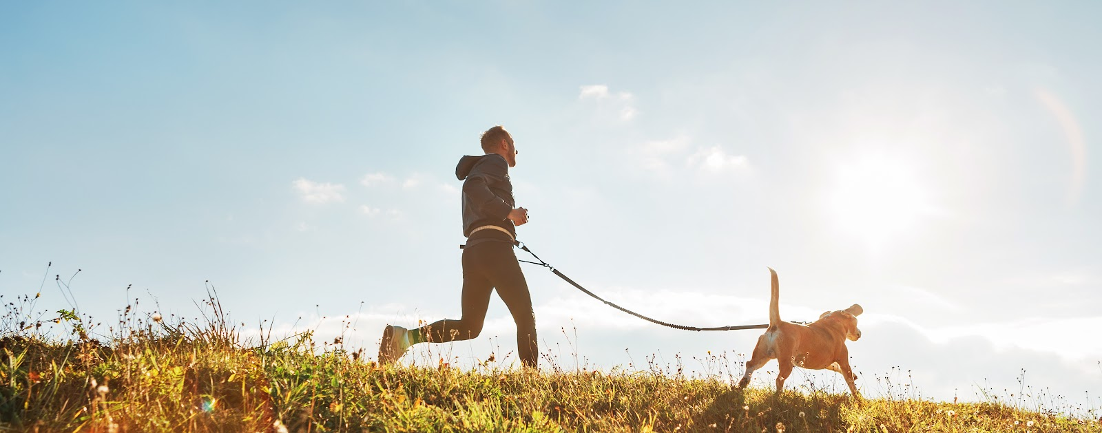 A man running with his dog in the sunlight
