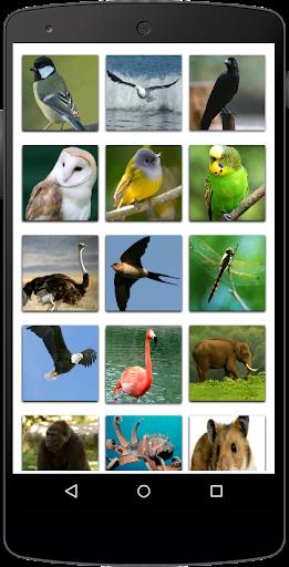 Nama Binatang  screenshots 1