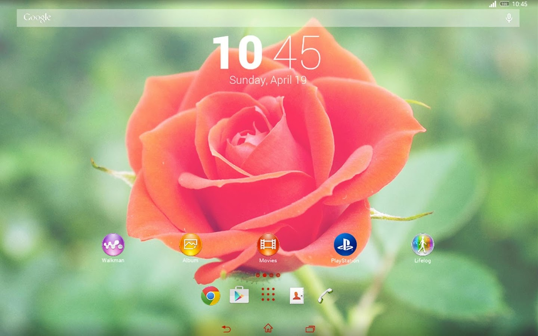 Google theme rose - Theme Rose Screenshot