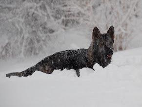Photo: Gøy med snø!