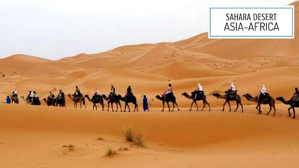sahara desert_image