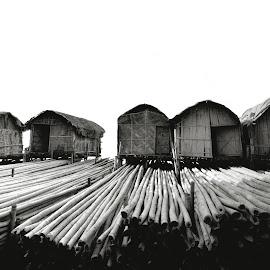 by Chakrabarty Oiiupuyu - Uncategorized All Uncategorized