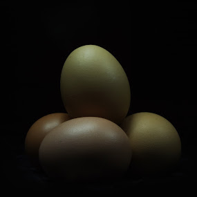 Egg in the dark by Daniel Theodorus - Food & Drink Ingredients ( ingredients, food, dark, egg, black )