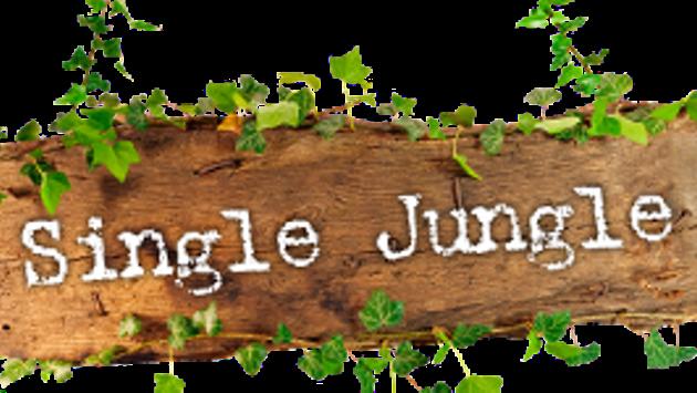 single jungle net erfahrungen