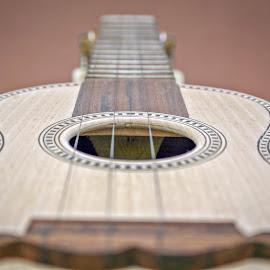 Cavaquinho by Paulo Leitão - Artistic Objects Musical Instruments ( cavaquinho )