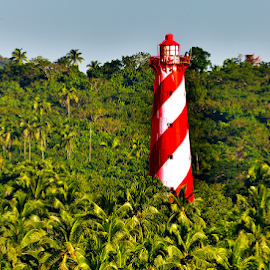 Light House by Pinaki Ghosh - Buildings & Architecture Other Exteriors ( green, lighthouse, forests, trees, landscape )