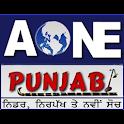 AOne Punjabi Live icon