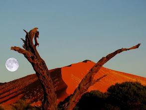 Photo: La lune dans les dunes du désert du Namib en Namibie