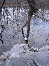 Photo: River Ice 1