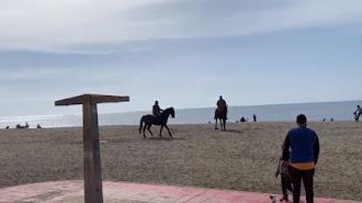 Este domingo 17, en la playa de El Zapillo.