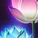 a1-Asian Lotus Flowers icon