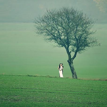 Wedding photographer Bruno Basich (Baziq). Photo of 10.11.2014