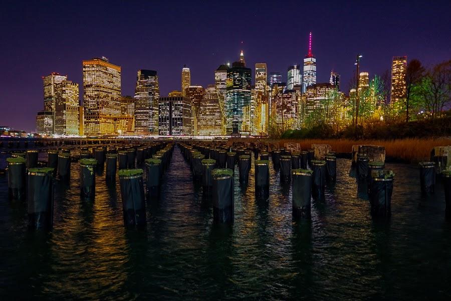 Manhattan and the Sticks by Carol Ward - City,  Street & Park  Skylines ( new york skyline at night, new york skline, new york city, new york, nyc, night shoot, nightscape, brooklyn pavilion, brooklyn )