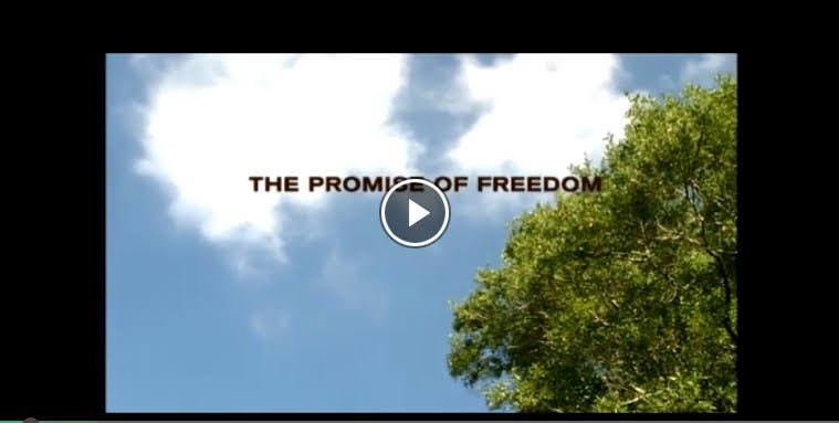 Image Description: The Promise of Freedom