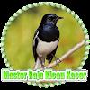 Master Raja Kicau Kacer