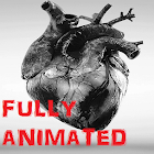 Beating Heart Live Wallpaper icon
