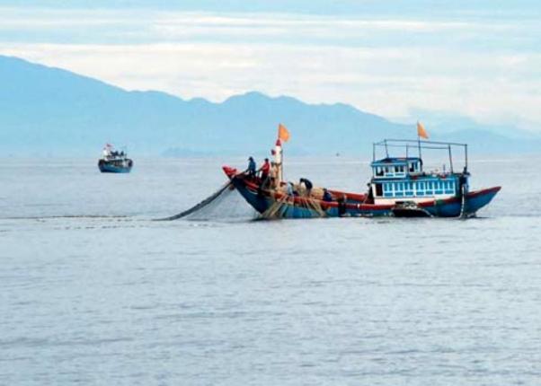 Máy định vị, đo sâu dò cá JMC V-6810P giúp nghề đánh cá bớt vất vả