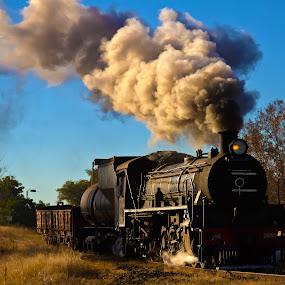 Steam train by Trippie Visser - Transportation Trains ( sky, trees, train, smoke, steam )