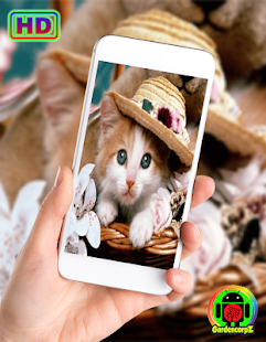 Cute Animals Wallpaper (HD) for PC-Windows 7,8,10 and Mac apk screenshot 5