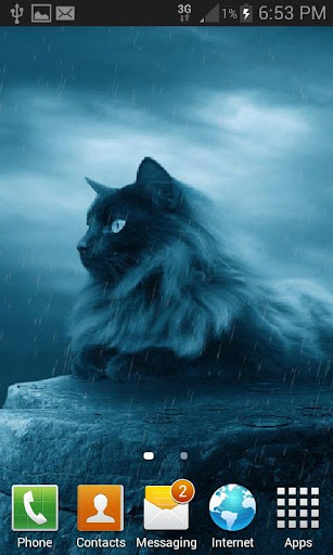 black cat in rain lwp screenshot 2