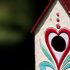 Spy in the House of Love by Susan Myers - Artistic Objects Other Objects ( red, birdhouse, artistic, object )