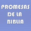 Promesas de la Biblia icon