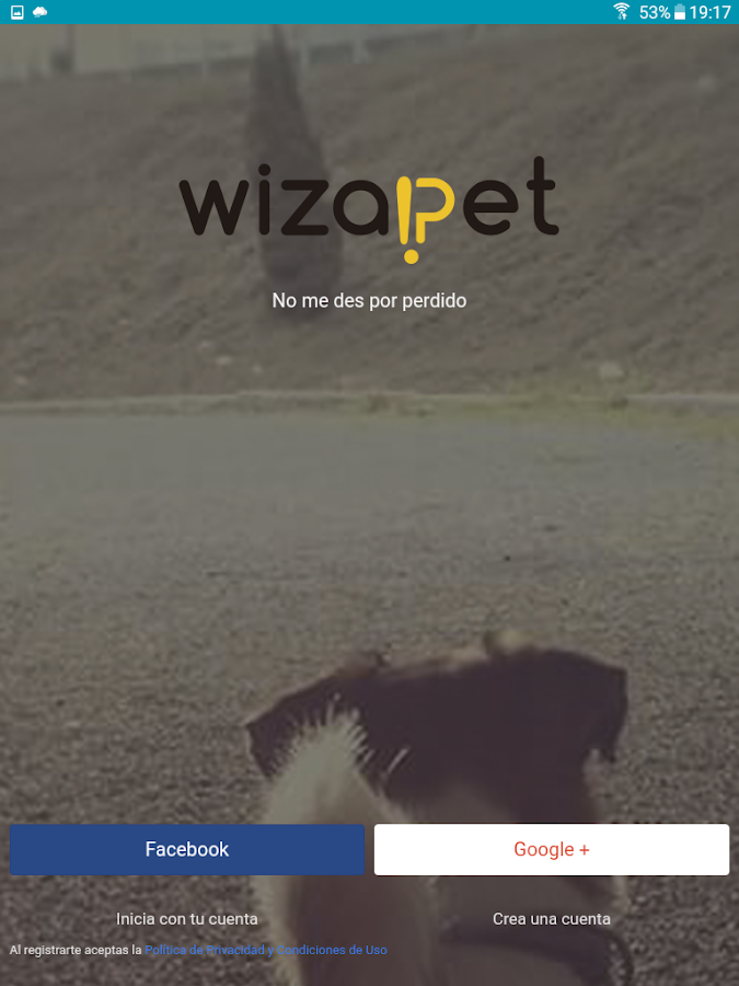WIZAPET- screenshot
