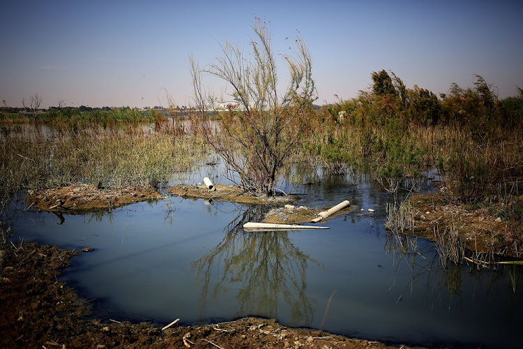 Claims have been made that sewage is being pumped into different bodies of water in Welkom.