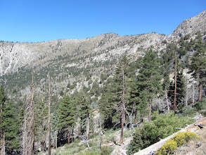 Photo: View northwest toward Mt. Islip