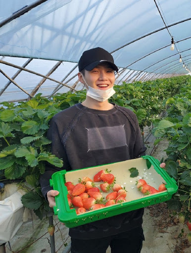 BTS Suga in strawberry farm