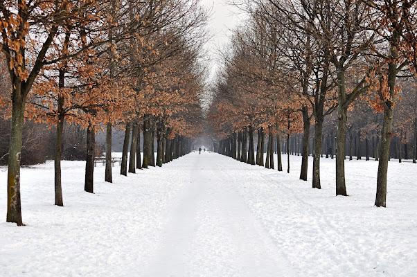 Passeggiata al parco di gianfranco_cosmai
