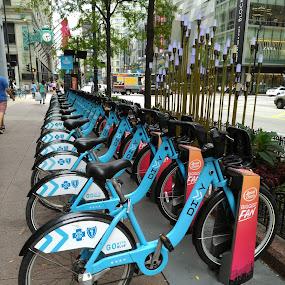 by Tiffany Wu - Transportation Bicycles