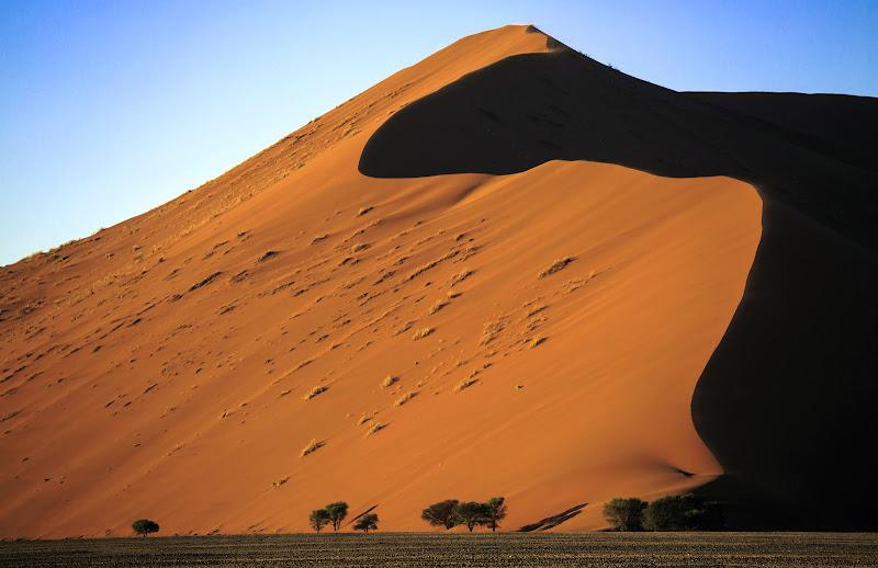 Namib di codadilupo