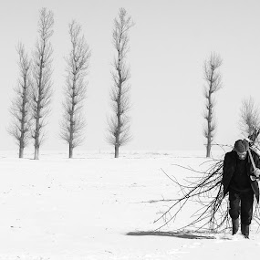 Old peasant by Daniel Cozma - People Fine Art ( winter, farmer, trees, ax, lumberjack )
