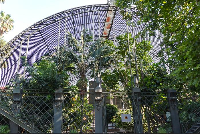 El Jardín Botánico de Valencia: información y visita
