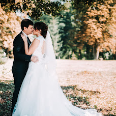 Wedding photographer Alina Ivanova (ivanovaa). Photo of 23.01.2017