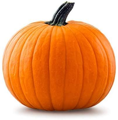 Amazon.com : 20 Big Max Pumpkin Seeds - Grows Pumpkins up to 100 lbs! Great  for Pies and Halloween by RDR Seeds : Garden & Outdoor