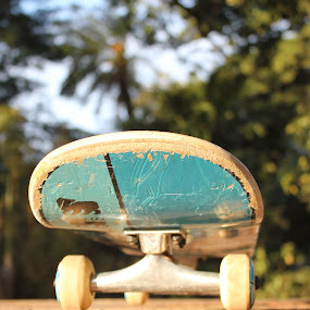 In the park..... by Maz Tissink - Artistic Objects Still Life ( skateboard )