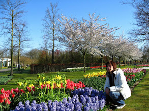 Photo: #023-Le parc floral du Keukenhof.