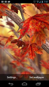 Autumn Tree Free Wallpaper Apk  Download For Android 1