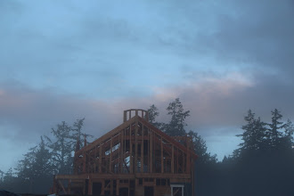 Photo: early misty morning