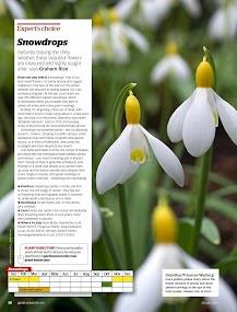 Gardeners' World Magazine- screenshot thumbnail