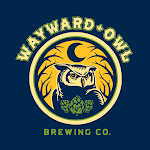 Wayward Owl Bird Bath