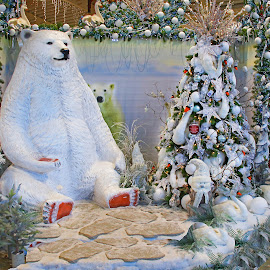 Big Bear by Wilson Beckett - Public Holidays Christmas (  )