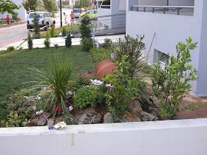 Photo: The Athens Olympic Village - Garden - Κήπος 3