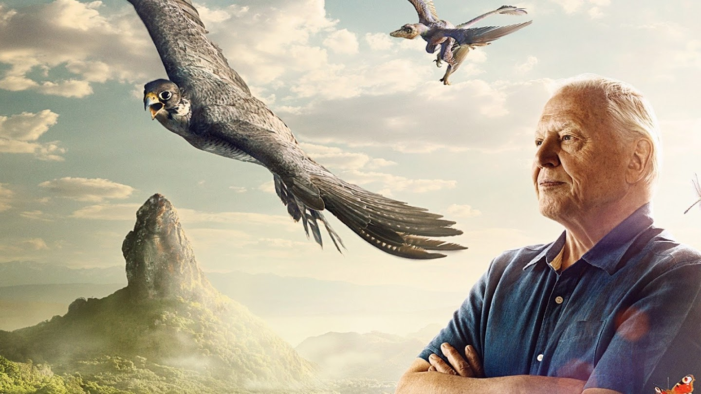 Watch David Attenborough's Conquest of the Skies live